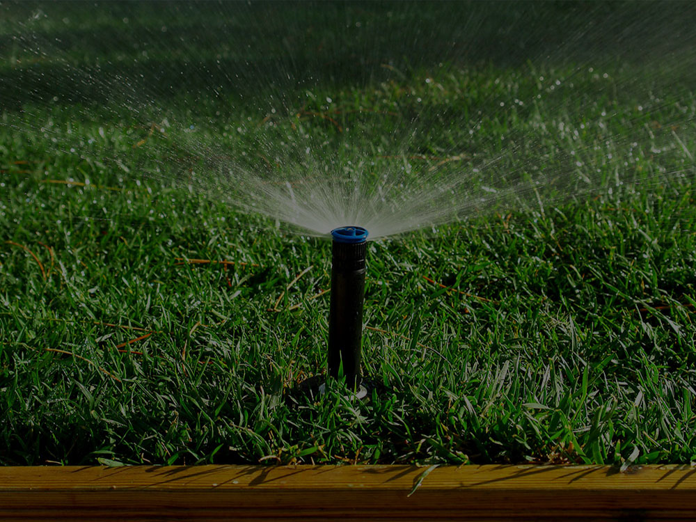Moncton Irrigation