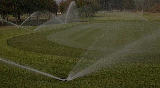 Shediac Irrigation