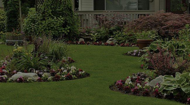 Moncton Landscape Design